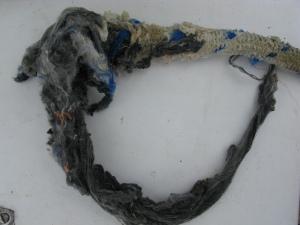 Mooring-diving rope cut